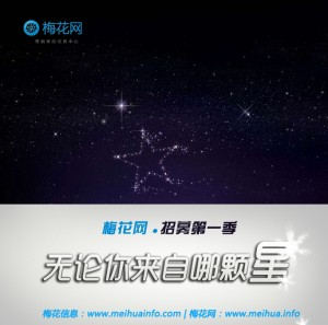 梅花网招募第1季1-2014